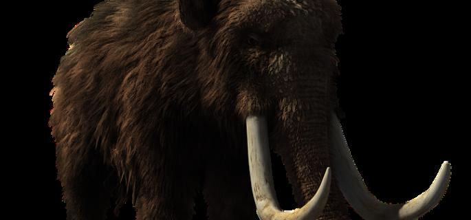 woolly-mammoth-2722882_960_720