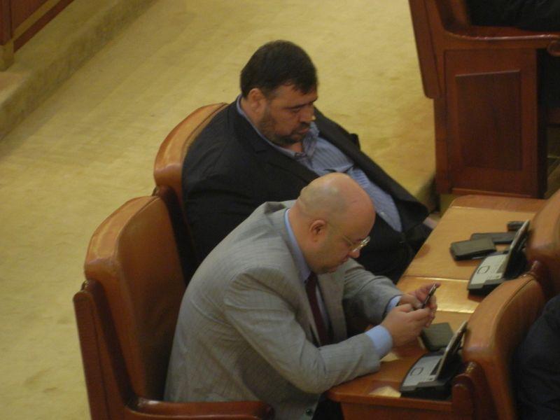 Mazilu doarme parlament
