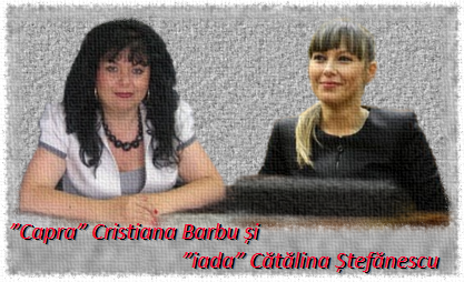 cristiana-barbu-c899i-cc483tc483lina-c899tefc483nescu